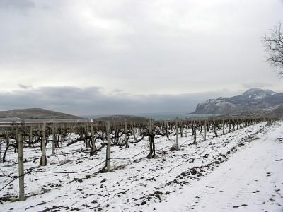 Замерзший Коктебель и гостевой дом Волошина