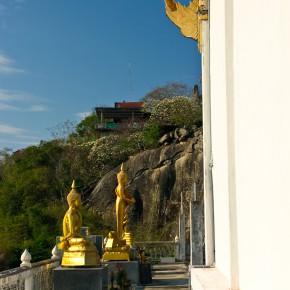 Храм Гигантской Свиньи
