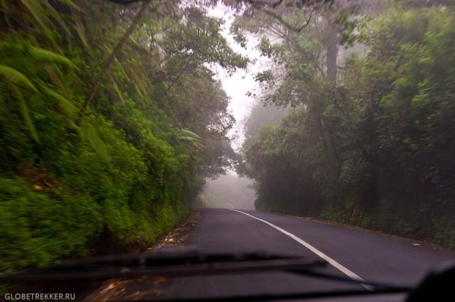 Аренда машины и байка на Бали: наш опыт
