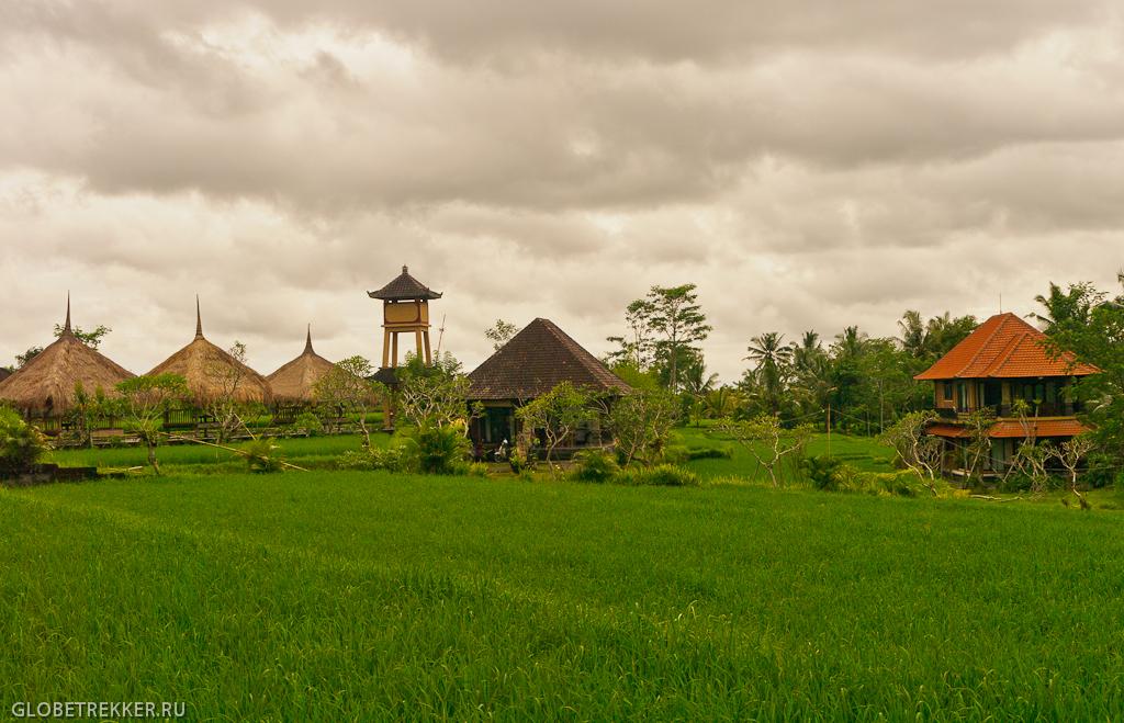 Наш дом в Убуде и краткая инструкция по поиску жилья на Бали 2