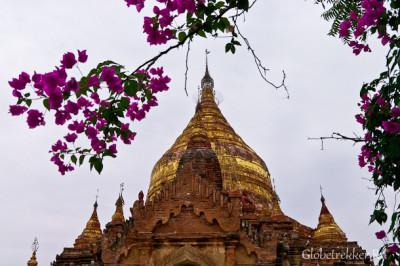 Баган: практическая информация