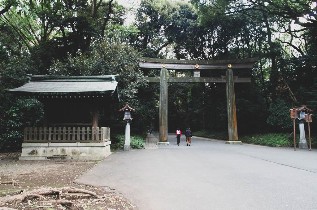 Токио, день 1: Храм, сад, небоскрёб и Хатико