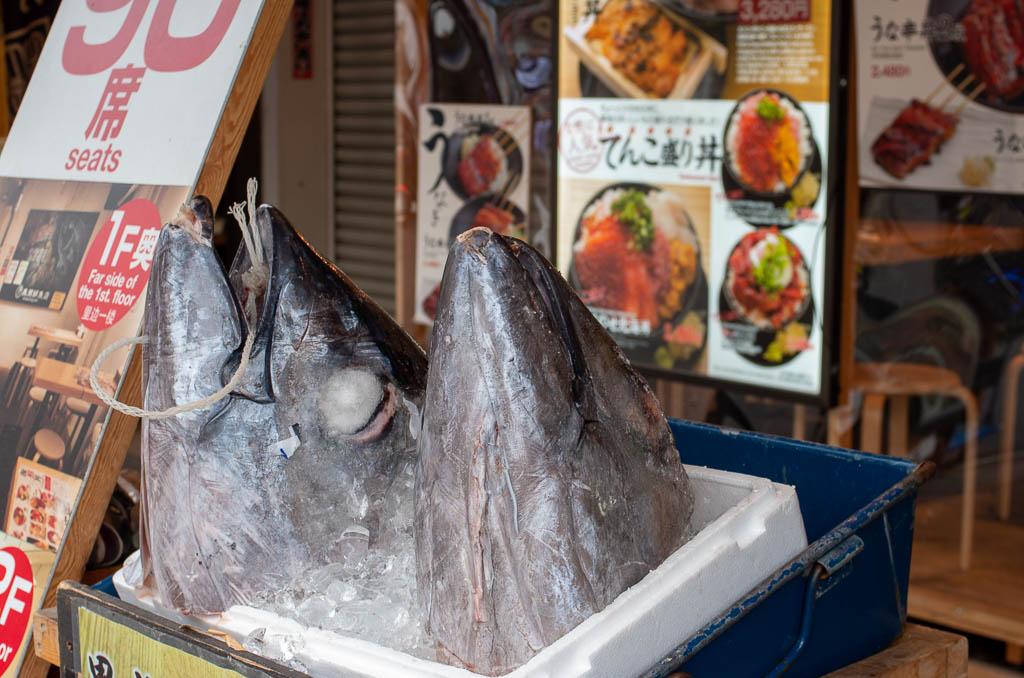 Токио, день 2: Рынок, рыба, остров, шмотки